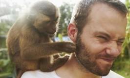 Об орущих обезьянках на плечах руководителя детского центра